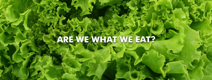 Are we what we eat?