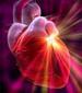 Riesgo coronario atribuible a los principales factores de riesgo cardiovascular
