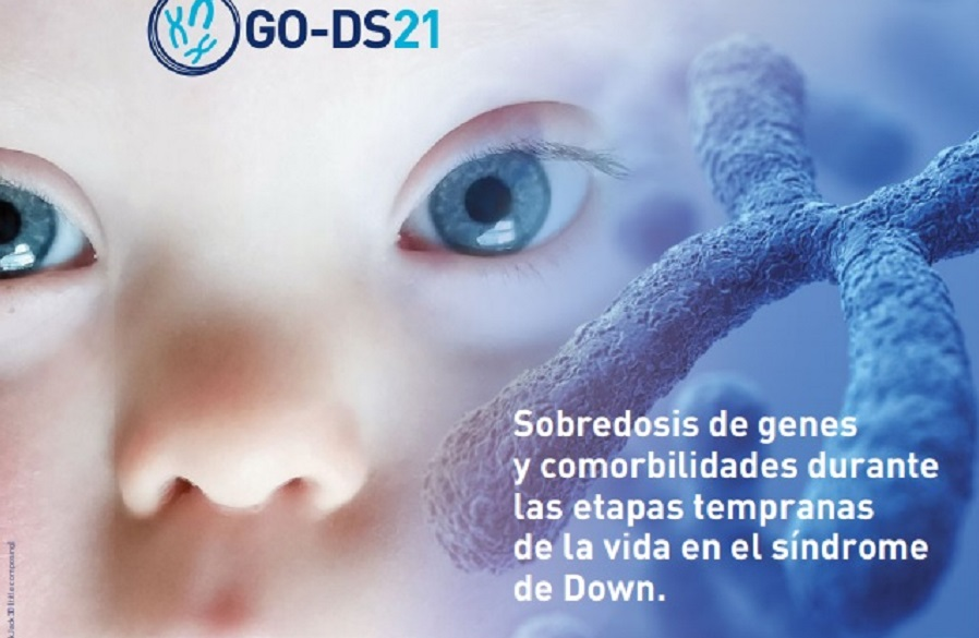 GO-DS21: Obesitat i síndrome de Down